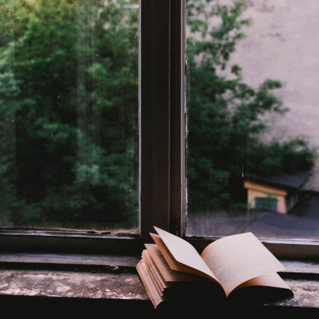 Reading Window Reflecting.PNG
